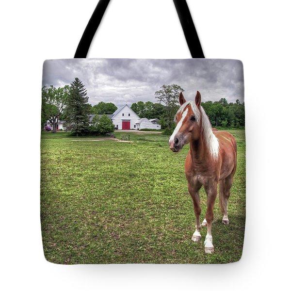 Horse In Pasture Tote Bag