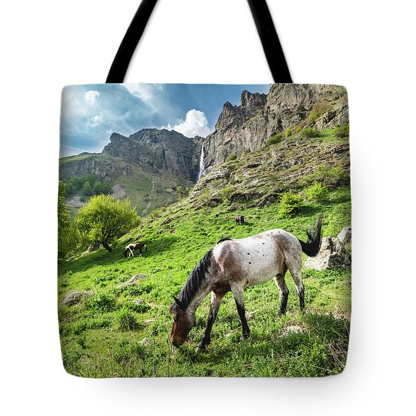 Tote Bag featuring the photograph Horse On Balkan Mountain by Milan Ljubisavljevic