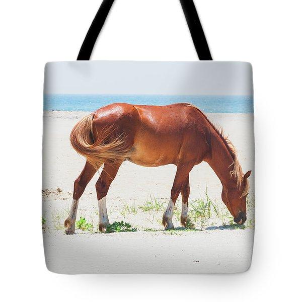 Horse On Beach Tote Bag