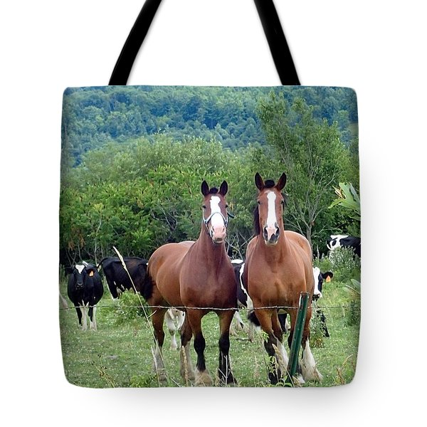 Horses And Cows.  Tote Bag
