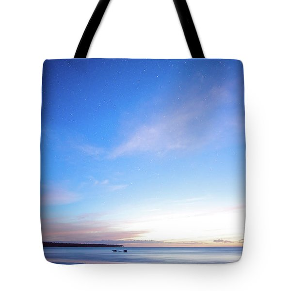 Horses Play In The Surf At Twilight Tote Bag