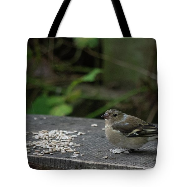 Tote Bag featuring the photograph House Sparrow Next To Seed On Bench by Scott Lyons