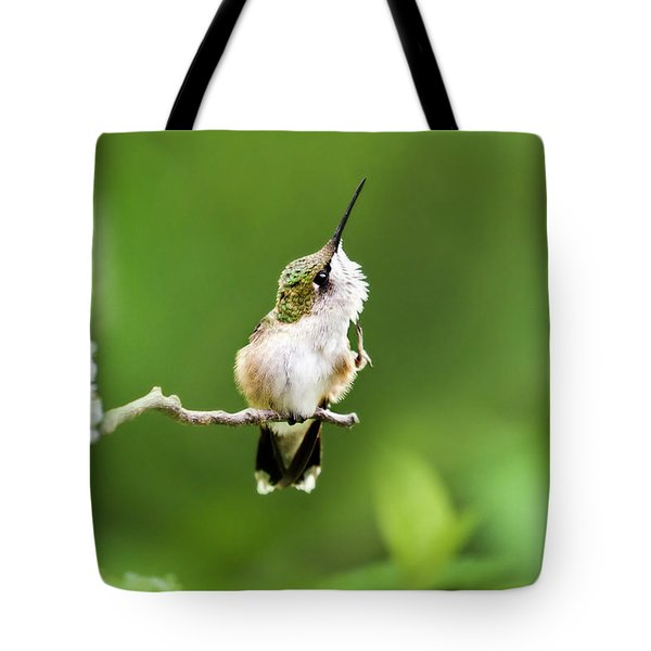 Hummingbird Flexibility Tote Bag