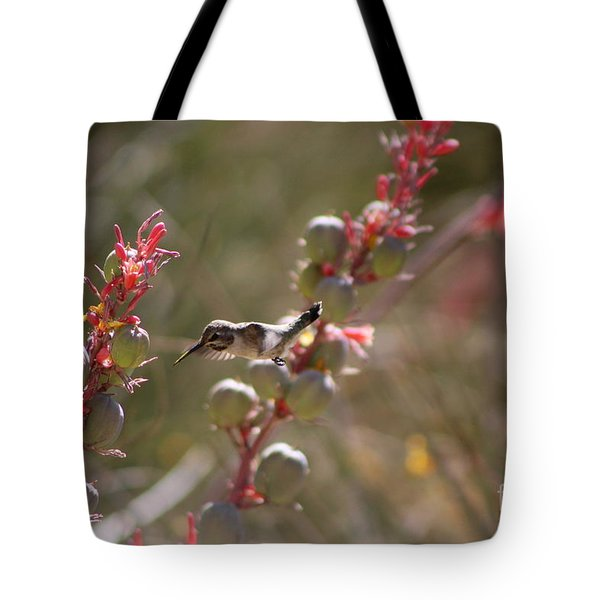 Hummingbird Flying To Red Yucca 1 In 3 Tote Bag