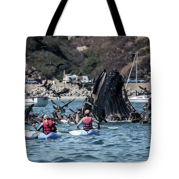 Humpbacks In Avila Harbor Tote Bag