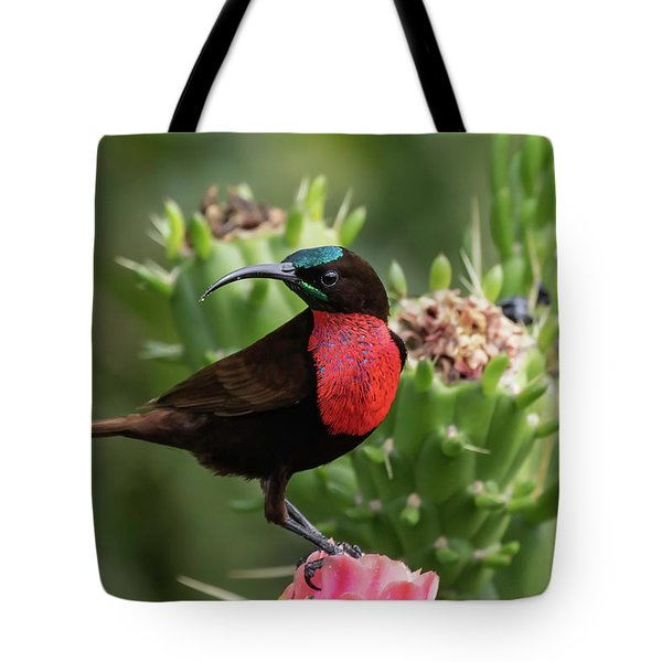 Tote Bag featuring the photograph Hunter's Sunbird by Thomas Kallmeyer