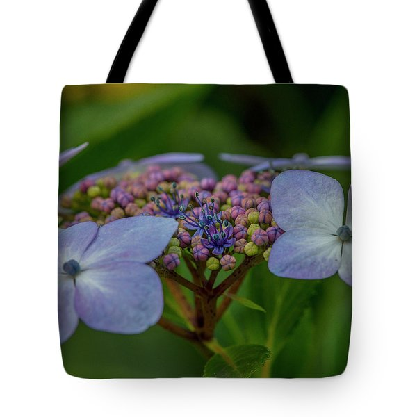 Tote Bag featuring the photograph Hydrangea Close Up by Matthew Irvin