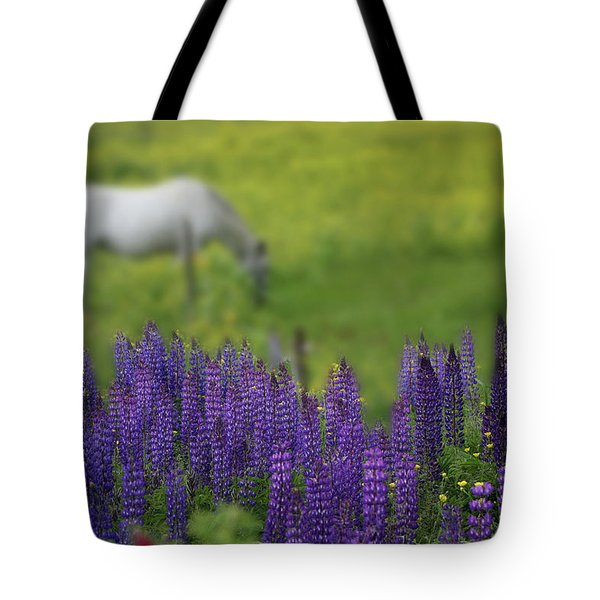 Tote Bag featuring the photograph I Dreamed A Horse Among Lupine by Wayne King