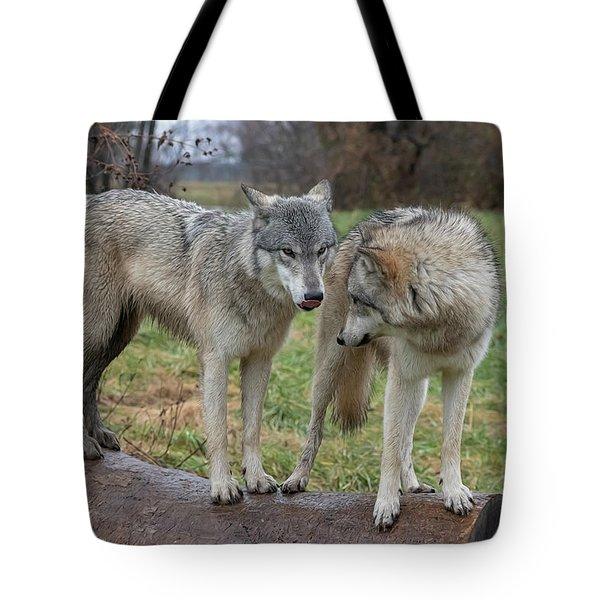 I Know You Tote Bag
