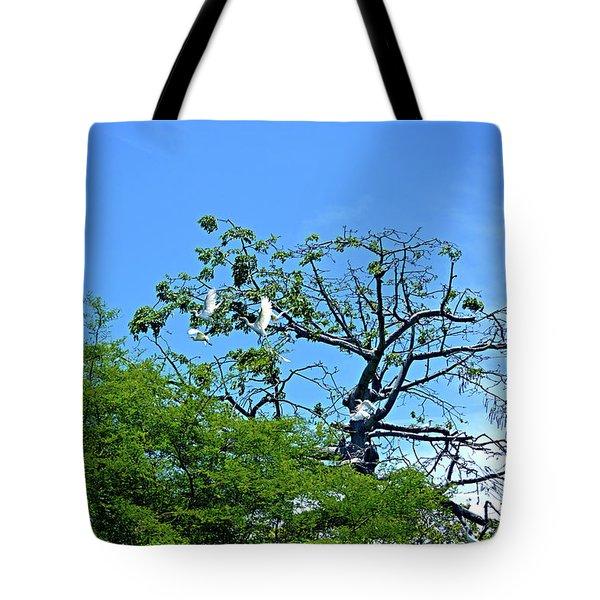 Ibis Risen Tote Bag
