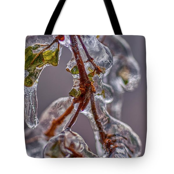 Tote Bag featuring the photograph Ice Capsule by Meta Gatschenberger