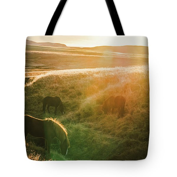 Icelandic Landscapes, Sunset In A Meadow With Horses Grazing  Ba Tote Bag