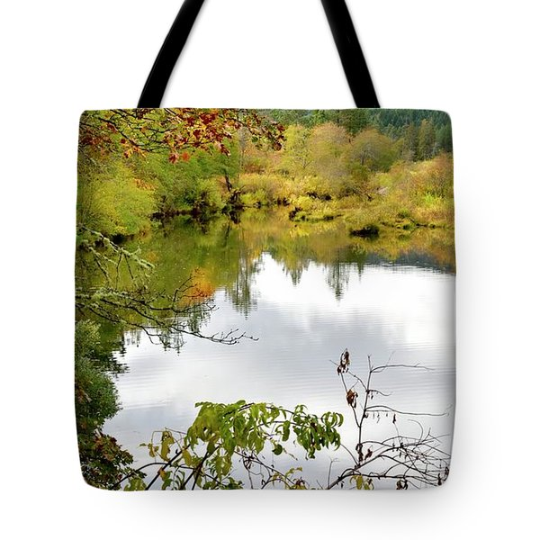 Tote Bag featuring the photograph Illinois River Fall Color by Jerry Sodorff