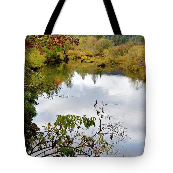 Tote Bag featuring the photograph Illinois River Pool by Jerry Sodorff