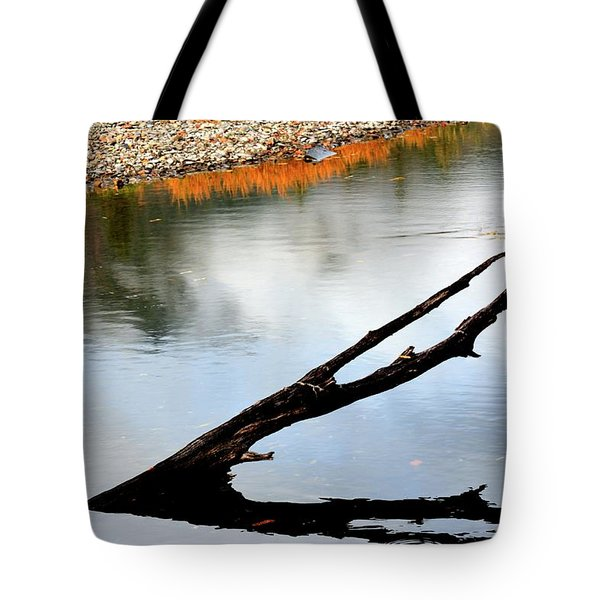 Tote Bag featuring the photograph Illinois River Stump by Jerry Sodorff