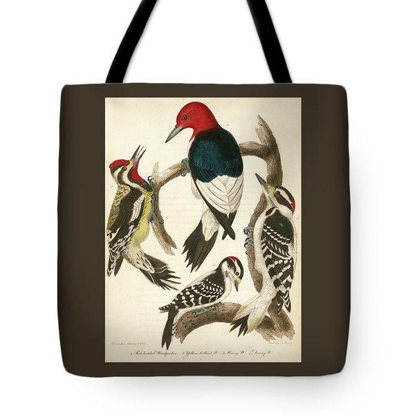 1. Red-headed Woodpecker. 2. Yellow-bellied Woodpecker. 3. Hairy Woodpecker. 4. Downy Woodpecker. Tote Bag