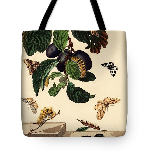 illustration by Moses Harris from 'The Aurelian, a Natural History of English Moths and Butterfli... Tote Bag