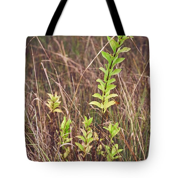 Tote Bag featuring the photograph In Tall Grass by Whitney Goodey