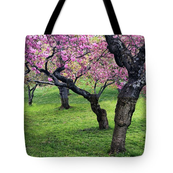 In The Grove Tote Bag