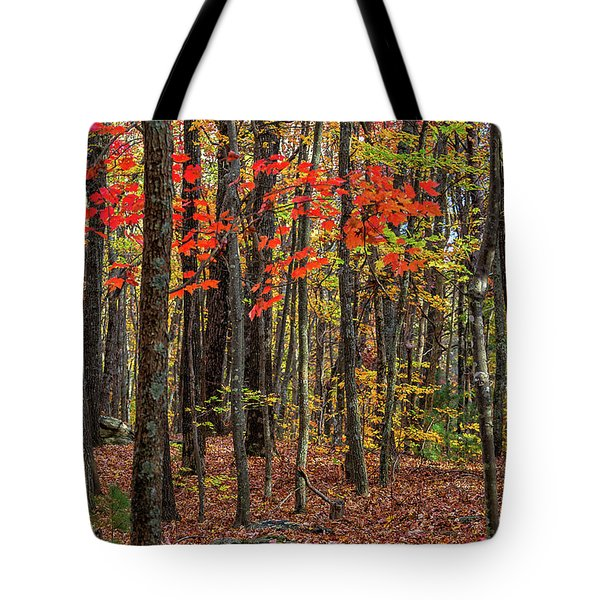 Tote Bag featuring the photograph In The Woods by Bernd Laeschke