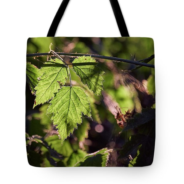 Tote Bag featuring the photograph In Triplicate by Whitney Goodey