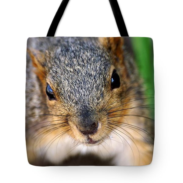 In Your Face Fox Squirrel Tote Bag