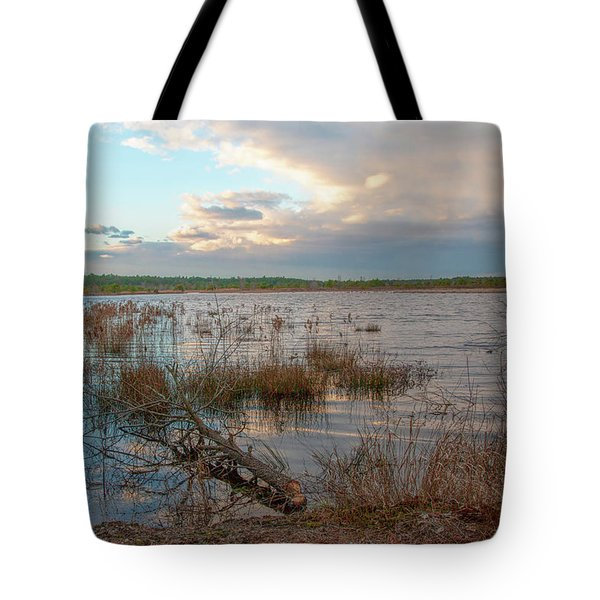 Tote Bag featuring the photograph Incoming In The New Jersey Pine Barrens by Kristia Adams