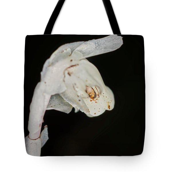 Indian Pipe Rabbit Head Tote Bag