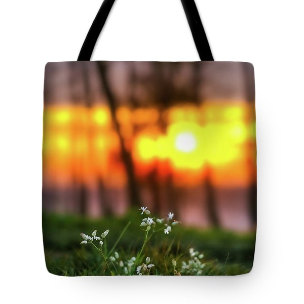Tote Bag featuring the photograph Into Dreams by Davor Zerjav