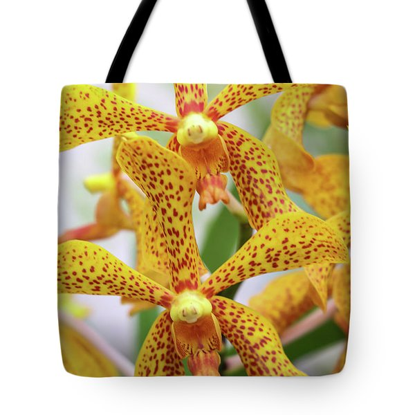 Intriguing Yellow Spider Orchids Tote Bag