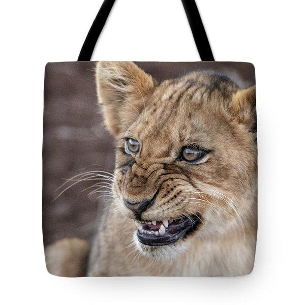 Irritated Lion Cub Tote Bag