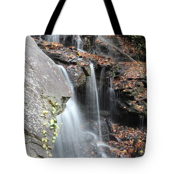 Tote Bag featuring the photograph Issaqueena Falls 2013 A by Joseph C Hinson Photography