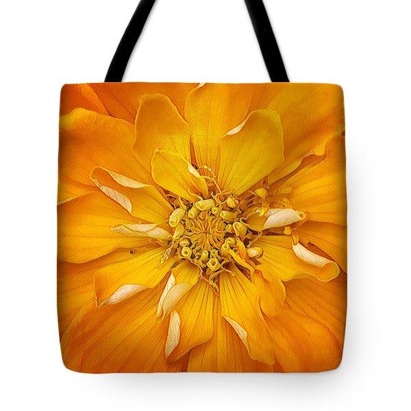 I've Got Sunshine Tote Bag