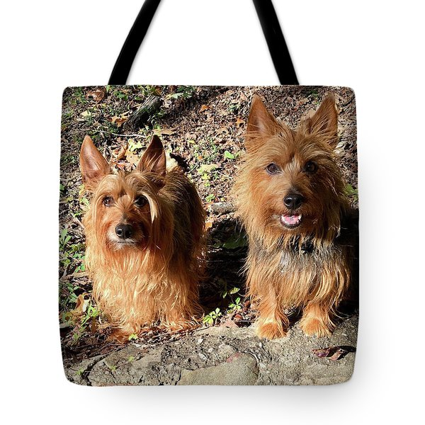 Jack And Lily 2 Tote Bag