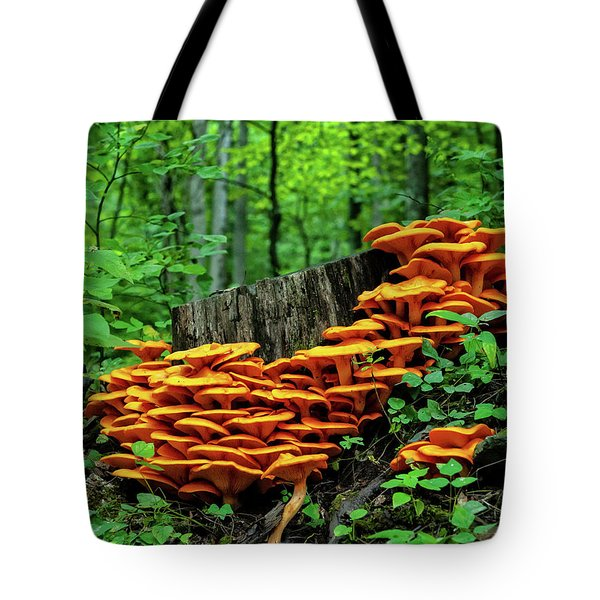 Jack O' Lantern Forest Tote Bag