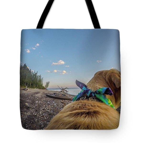 Tote Bag featuring the photograph Jackson Lake By Photo Dog Jackson by Matthew Irvin