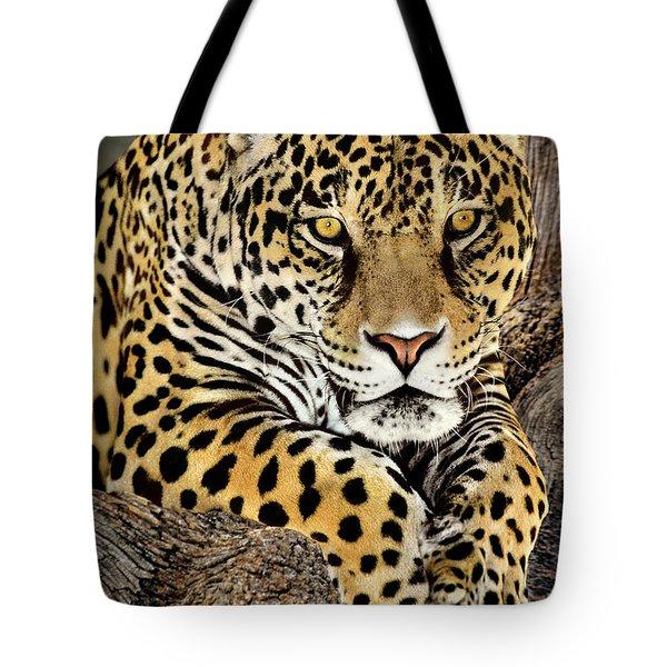 Jaguar Portrait Wildlife Rescue Tote Bag