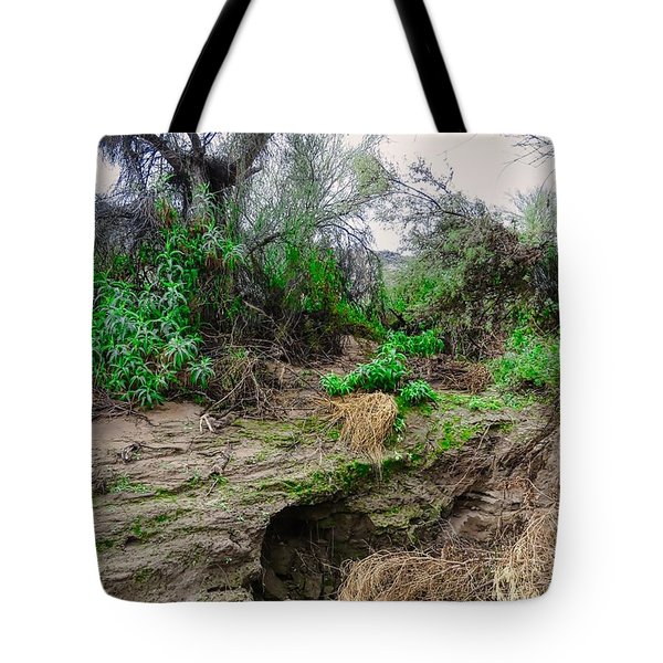 January Day  In The Vekol Wash Tote Bag