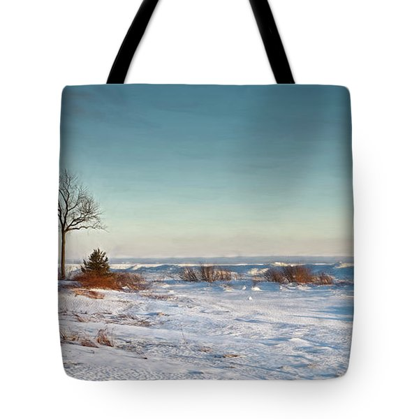 January Shoreline On Erie Tote Bag