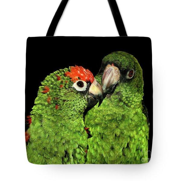 Jardine's Parrots Tote Bag