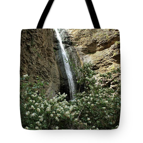 Jump Creek Falls Canyon Tote Bag