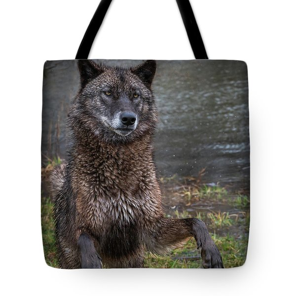 Jumping Boy Tote Bag