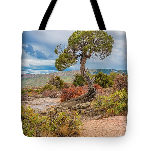 Juniper At Dragon Point Tote Bag
