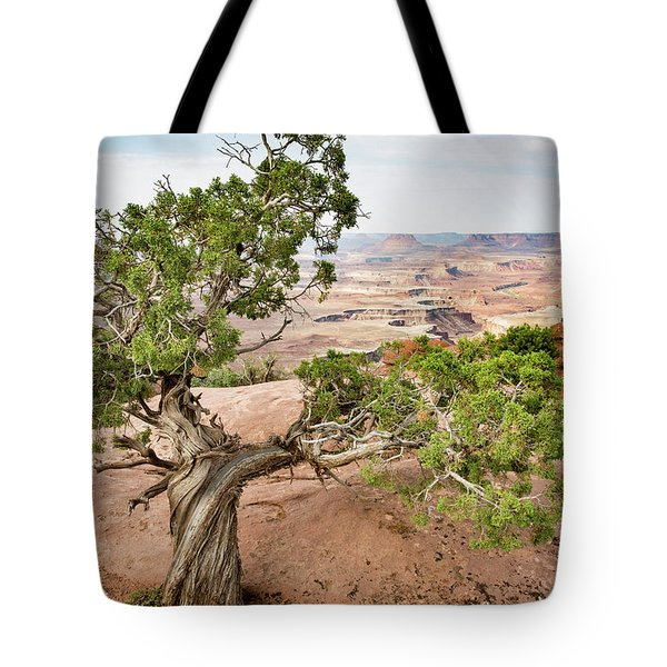Juniper Over The Canyon Tote Bag