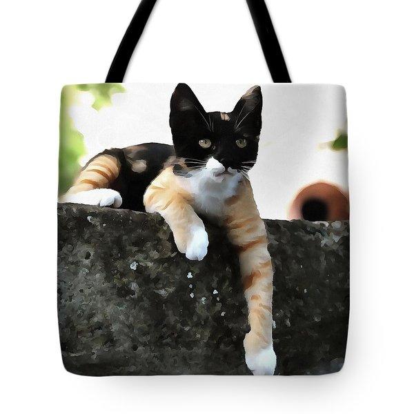 Just Chillin Tricolor Cat Tote Bag