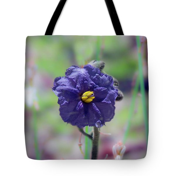 Tote Bag featuring the photograph Kangaroo Apple, Solanum Aviculare by Elaine Teague