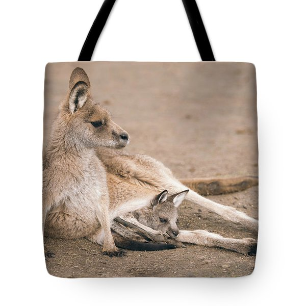 Tote Bag featuring the photograph Kangaroo Outside by Rob D Imagery