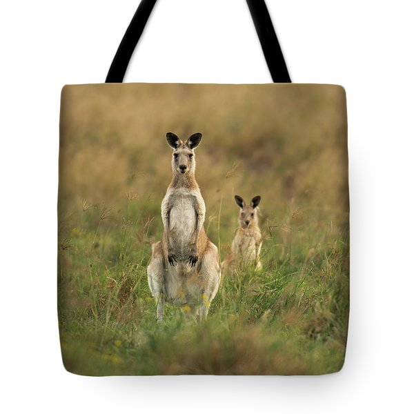 Kangaroos In The Countryside Tote Bag
