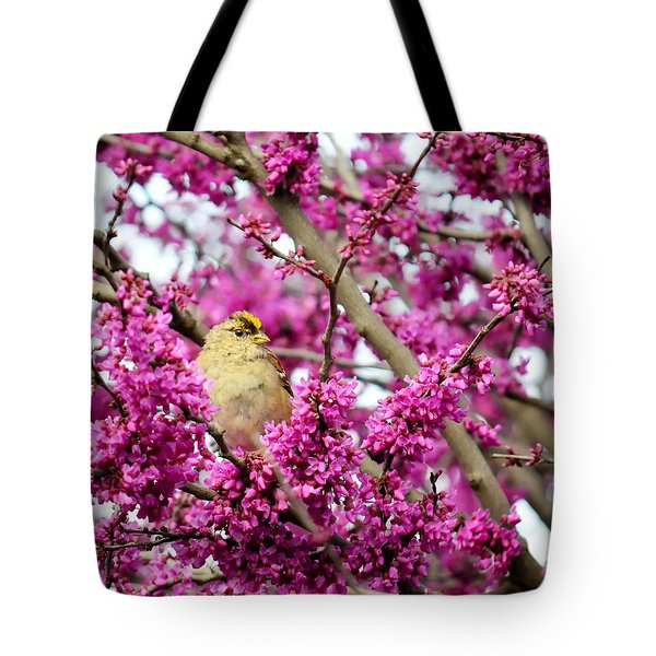 King Of The Redbud - Golden-crowned Sparrow Tote Bag