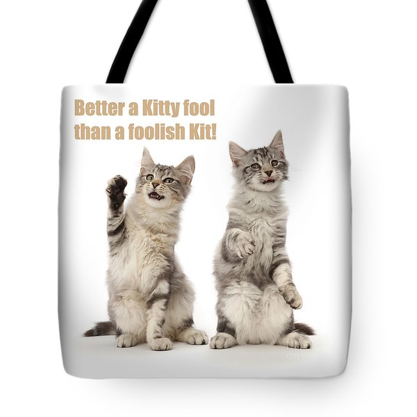 Tote Bag featuring the photograph Kitty Fools by Warren Photographic